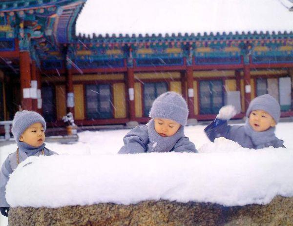 主题:少林寺的招生广告(组图) 点击率:36960
