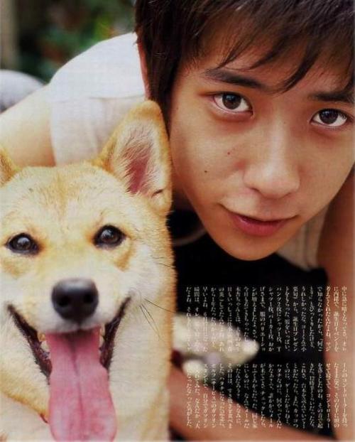 可爱的小柴犬nino,新戏加油噢!-好きやねん