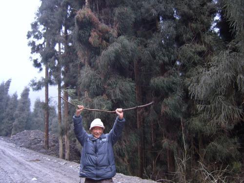 春节游鸡冠山原始森林奇遇(四):寻找野生动物的踪迹