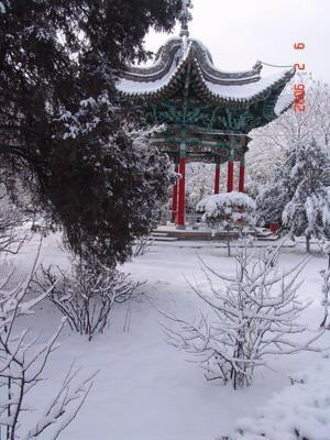 中国古典园林四季景观-中华文明园-我的搜狐