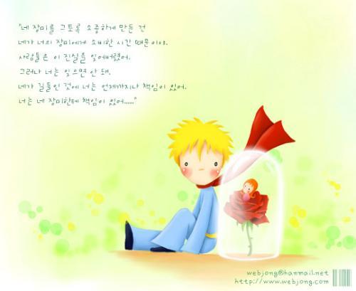 小王子·玫瑰·狐狸